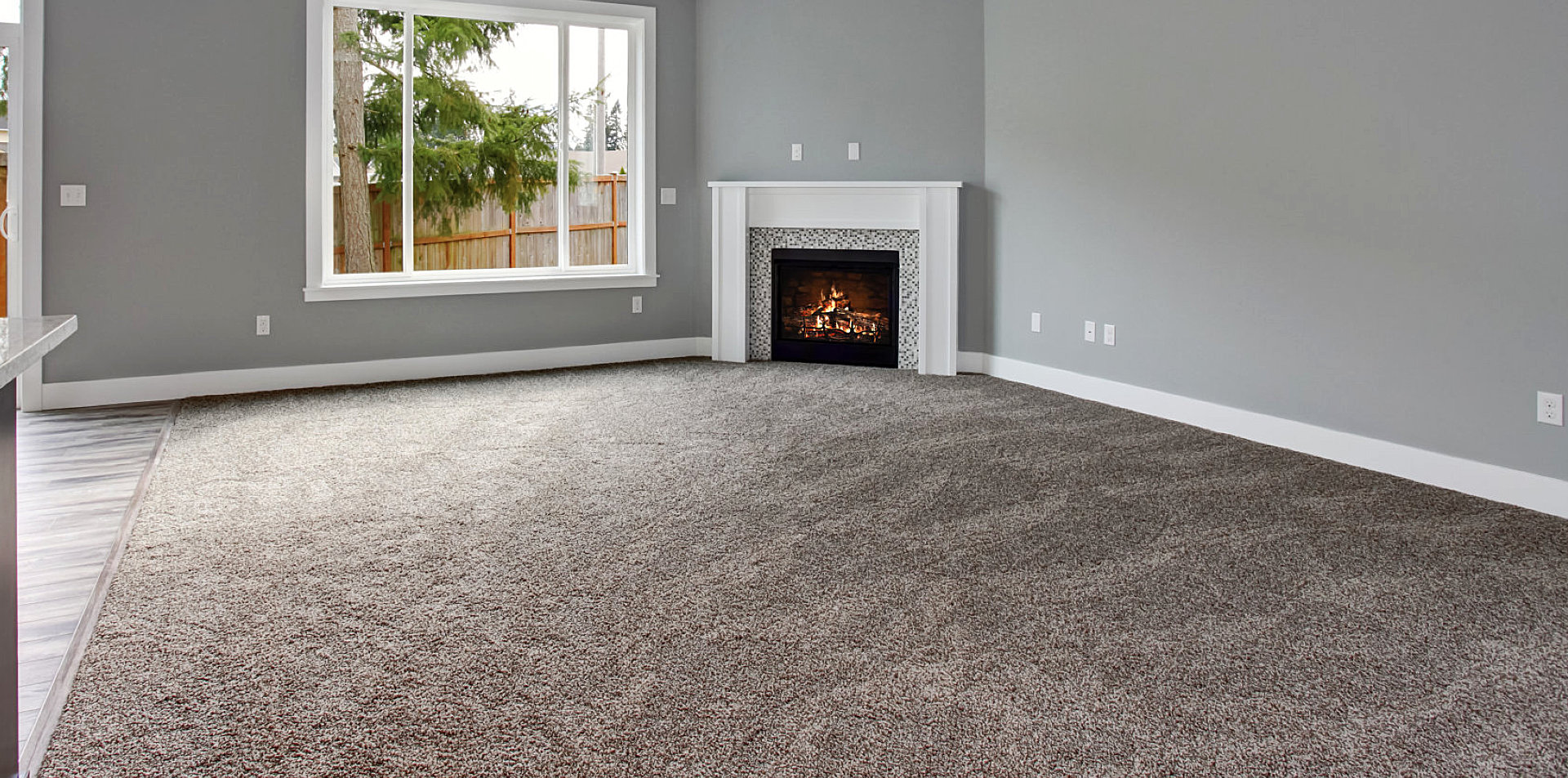 empty living room with a carpeted floor
